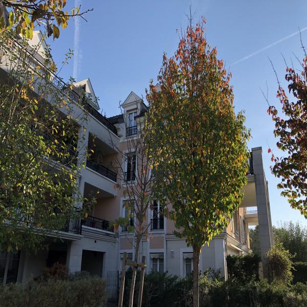 Offres de location Appartement Émerainville 77184